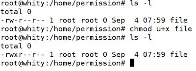 simbolic mode permission