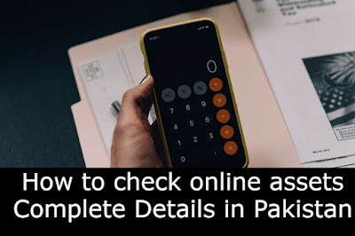 How to Check Online Assets in Pakistan