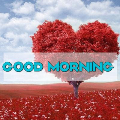 good morning wishes to love