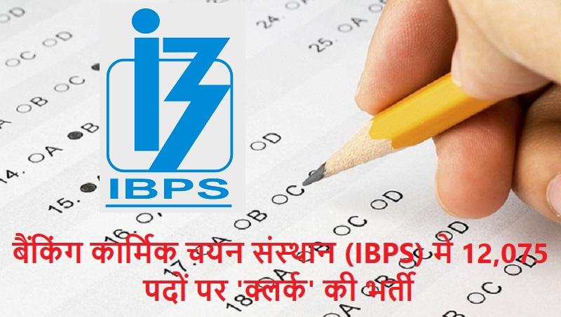 IBPS jobs 2019