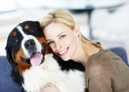 lesão ortopédica em cães