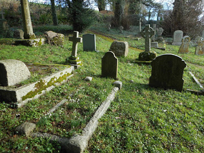 Graveyard with snowdrops, Cadbury Church, Devon. Photograph copyright © Belinda Whitworth 2021
