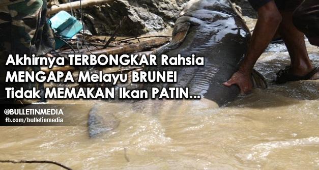 Akhirnya TERBONGKAR Rahsia MENGAPA Melayu BRUNEI Tidak MEMAKAN Ikan PATIN... Ini RUPANYA Kisahnya.. Memang TAK SANGKA!!!