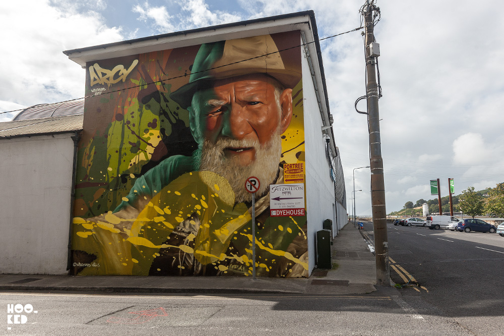 Street Art Mural In Waterford, Ireland painted by street artist Arcy. Photo ©Mark Rigney