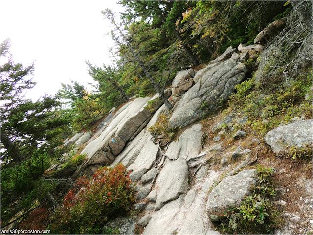Senderos del Cadillac Mountain en el Parque Nacional Acadia en Maine