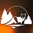 https://www.wildernessawareness.org/