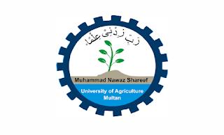 www.mnsuam.edu.pk - MNS University of Agriculture Multan Jobs 2021 in Pakistan