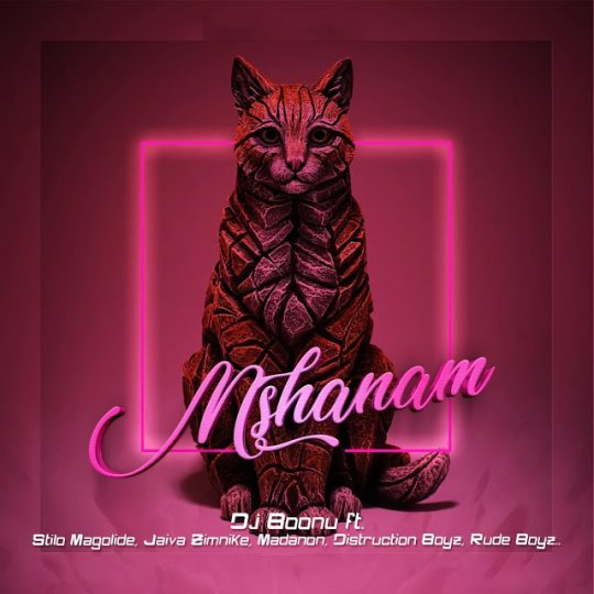 DJ Boonu – Mshanam feat. Distruction Boyz, Madanon, Rude Boyz, Stilo Magolide & Jaiva Zimnike