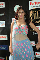 Amyra Dastur in Flower Print Choli Transparent Chunni at IIFA Utsavam Awards 33.JPG