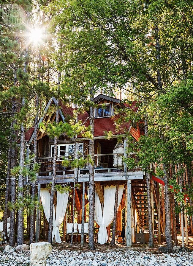 Treehouse Cabin by Lynne Knowlton