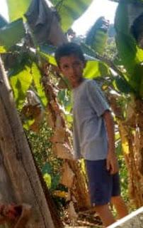 Menino Gabriel desaparece soltando pipa no Arapongal em Registro-SP