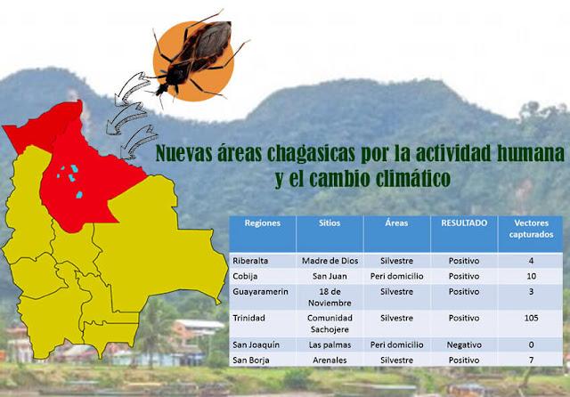Nuevas áreas chagásicas por actividad humana en la amazonía de Bolivia
