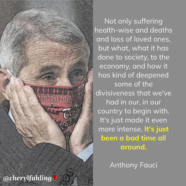Not only suffering health-wise and deaths and loss of loved ones, but what, what it has done to society, to the economy, and how it has kind of deepened some of the divisiveness that we've had in our, in our country to begin with. It's just made it even more intense. It's just been a bad time all around. — Dr. Anthony Fauci, National Institute for Allergy and Infectious Diseases Director