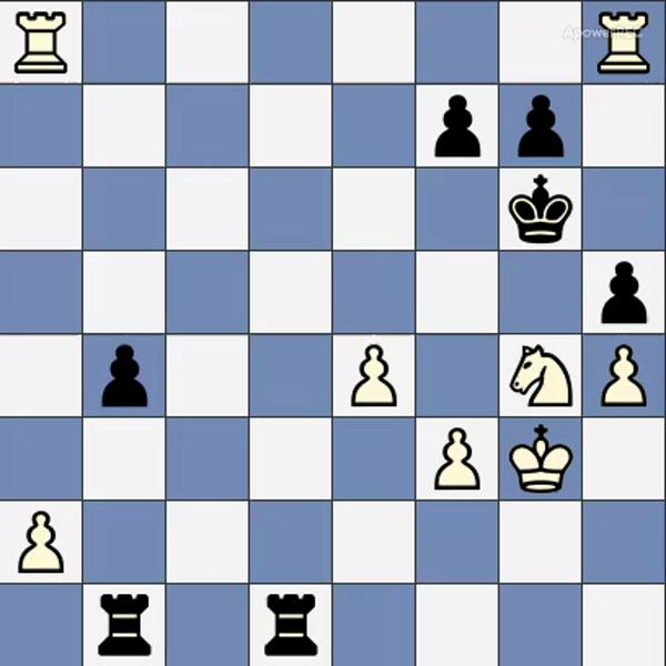 puzzle 1205lds