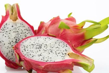 5 Kandungan buah Naga Merah dan manfaatnya untuk Kesehatan