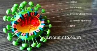 कोरोनावायरस और कोविड 19 क्या है ? कोविड19 के संकेत, लक्षण , फैलाव , रोकथाम के उपाय [ What is Coronavirus and Covid 19?  Covid 19 signs, symptoms, spre