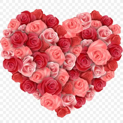 صور ورد وقلوب حب جميلة جدا