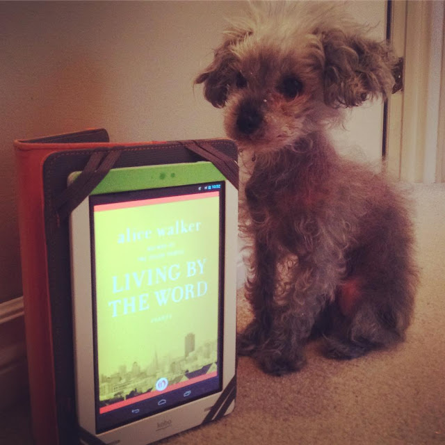 Murchie sits in a beige hallway. His ears are perked. Slightly in front of him is a white Kobo in a grey case, propped upright. Its screen shows the yellow cover of Living By the Word, with a grey city right along the bottom of the image.