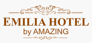 LOKER DRIVER EMILIA HOTEL PALEMBANG FEBRUARI 2020
