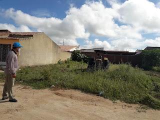 Terrenos baldios são limpos como forma de prevenir a dengue em Baraúna