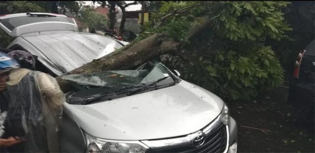 Badai di Bogor Makan Korban, Enny Reno Meninggal Tertimpa Pohon