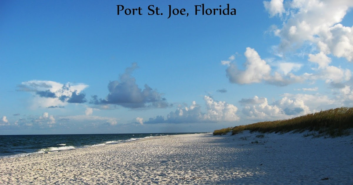 port saint joe single girls Sunset coastal grill call menu info 602 monument ave port saint joe, fl 32456 uber more photos dinner menu let's get started fried green tomatoes .