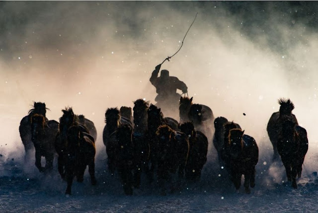 The Winners of the National Geographic Travel Photographer Awards of 2016