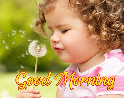 good morning baby girl i love you sweet good morning baby girl