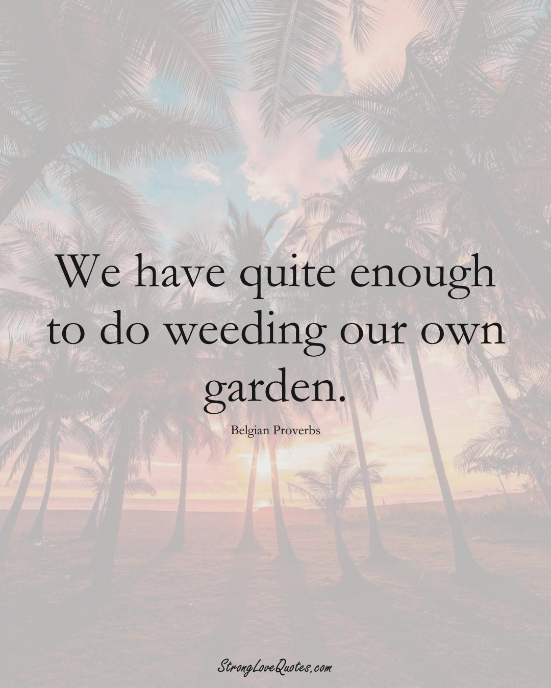 We have quite enough to do weeding our own garden. (Belgian Sayings);  #EuropeanSayings
