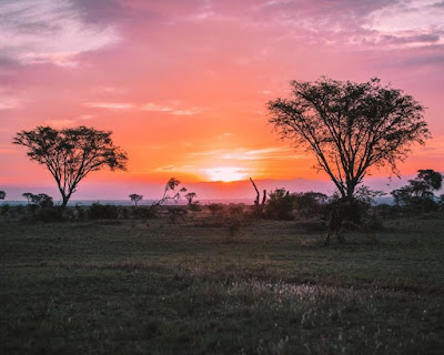 Best places to visit in Uganda