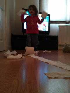toilet roll fun