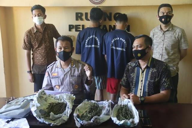 Berantas Peredaran Narkoba, Direktorat Resnarkoba Polda Bengkulu Tangkap Oknum Mahasiswa Dan Pelajar