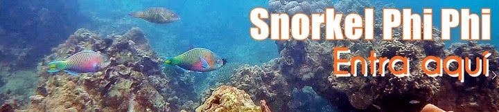 Snorkel-Phi-Phi-Tailandia