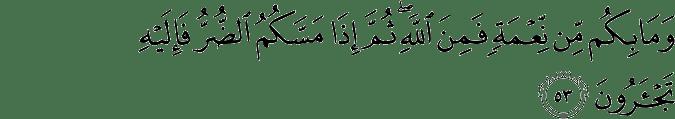 Surat An Nahl Ayat 53