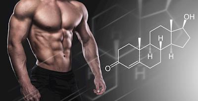 testosterone đối với nam giới