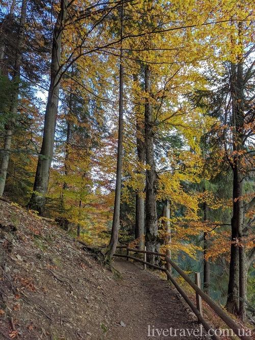 Национальный природный парк «Синевир»