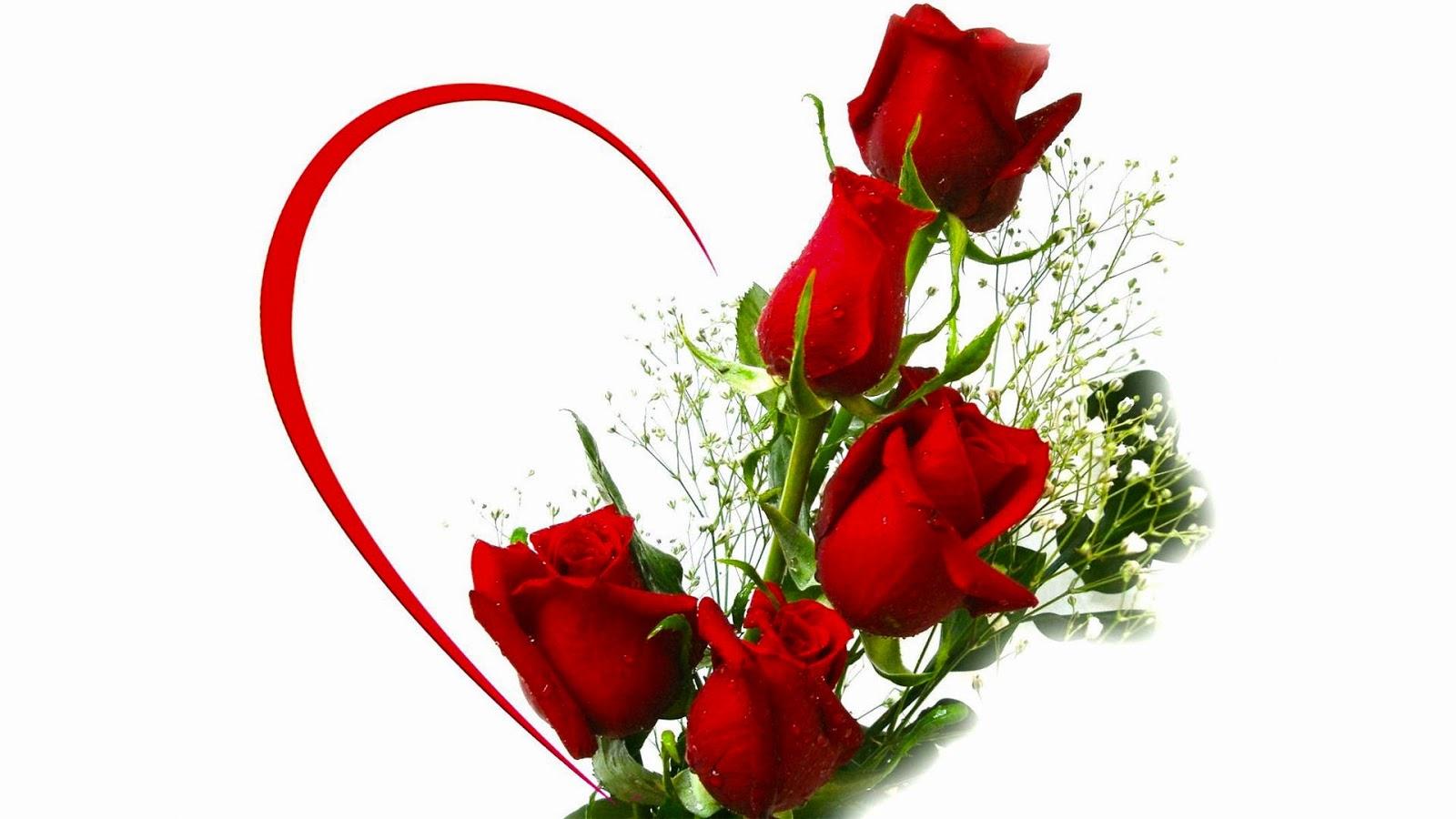 Rose Flower, Free Stock Photos - Free Stock Photos