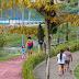 Reforma dos Parques Urbanos do Prosamim beneficia população da zona sul da capital