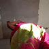 Urgente! Mulher é encontrada morta no Bairro Aeroporto em Anapurus