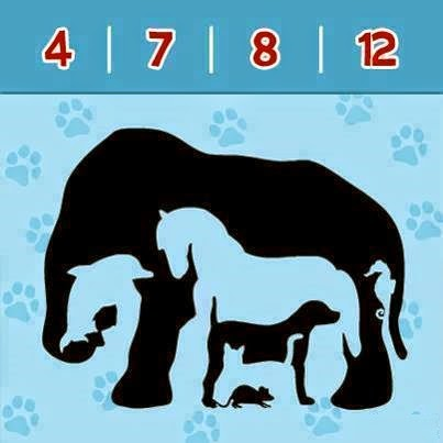 Hidden Animals Picture Puzzle