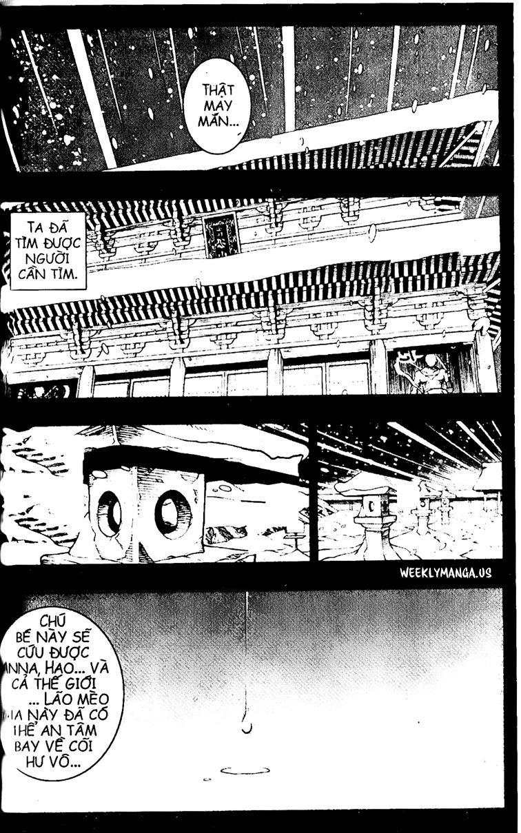 Shaman King [Vua pháp thuật] chap 174 trang 14
