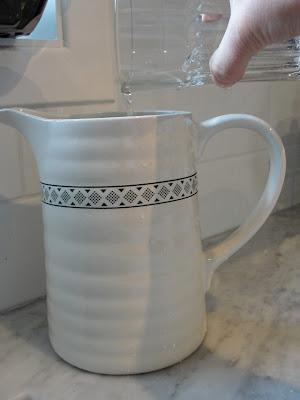 indoor pitcher for watering plants