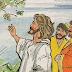 REFLEXIONES DE LA PALABRA (CCCXLIII). Domingo XI del Tiempo Ordinario