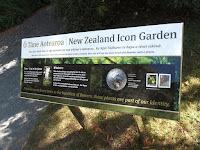 Native plant garden - Christchurch Botanic Gardens, New Zealand