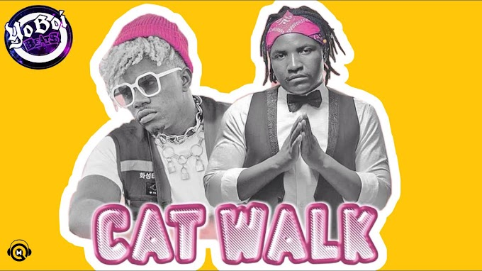 Uncle Epatan Feat. Rayvanny - Cat Walk (Afro Pop) [Download]