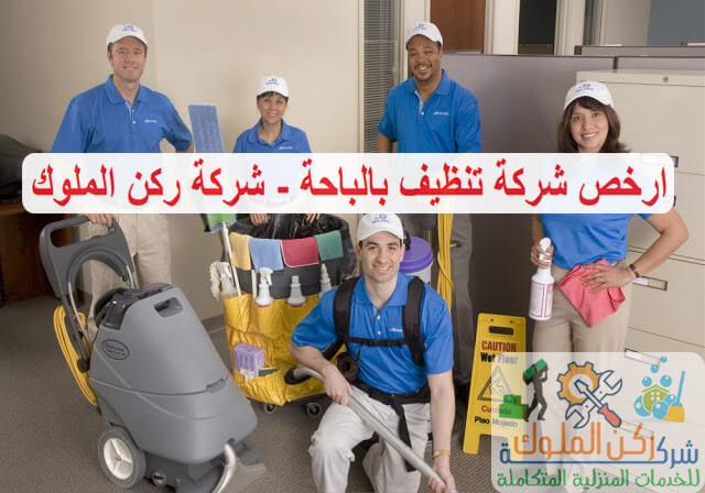 ارخص شركة تنظيف منازل بالباحة