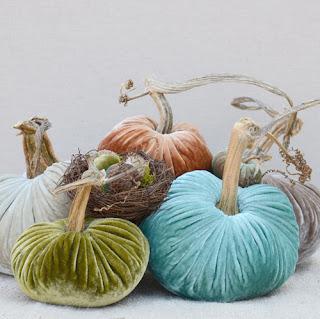 Love Feast Velvet Plush Pumpkins Lime Teal Autumn Color Palette