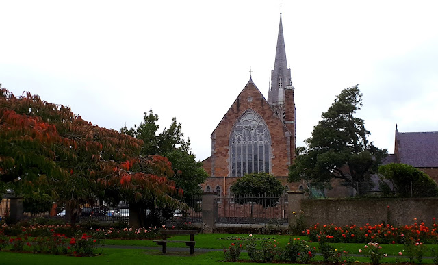 St. John's church, Tralee rose garden, roses, autum colors