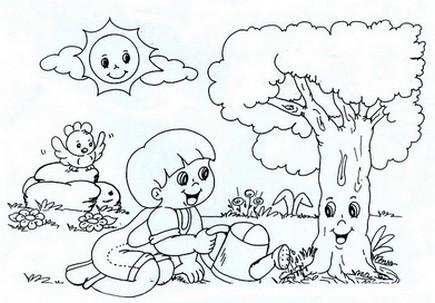 dia da floresta atividades desenhos arvores animais paisagens iii