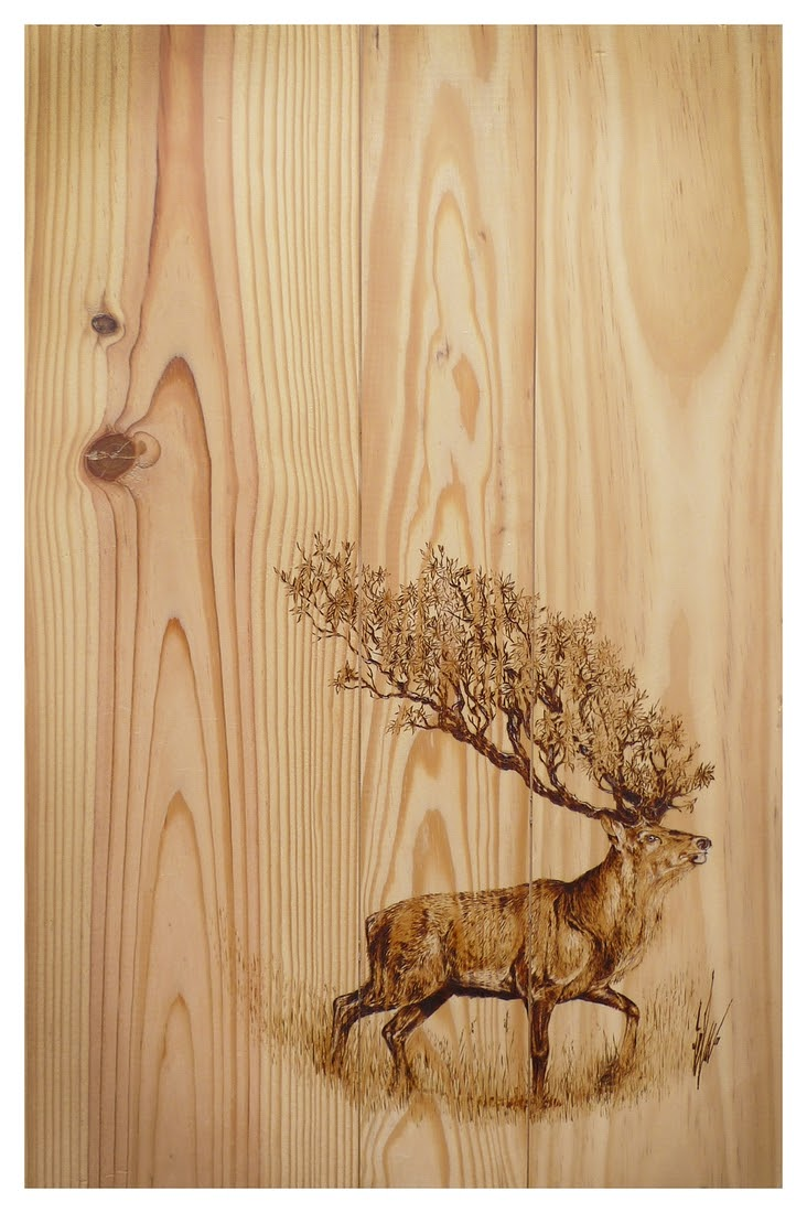 04-The-Stag-Eben-Cavanagh-Rautenbach-LeRoc-Animal-Drawings-using-Pyrography-www-designstack-co
